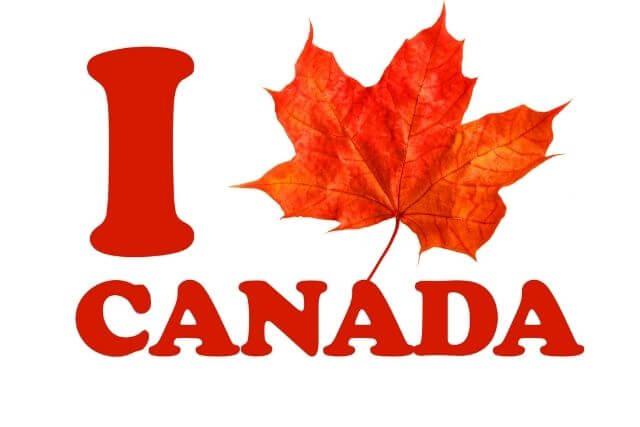 Canada logo maple leaf Love Canada
